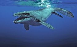 Aquar.IMAX.SeaRex_Prognathodon_-_Copy.jpg